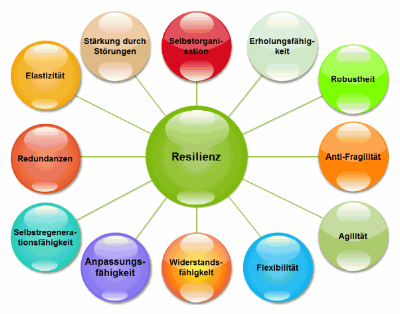 RESILIENZ (German) and RESILIENCE (English) – where´s the difference?